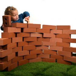 50 Piece Giant Life Size Bricks
