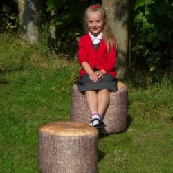Pack of 2 Learn about Nature Large Tree Stump Stools