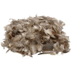 Guinea fowl feathers , approx. 100 pcs, natural, 3g