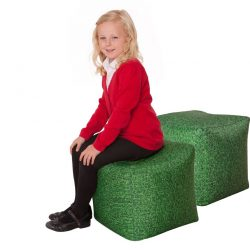 Pack of 2 Learn about Nature Grass Bean Bag Cubes