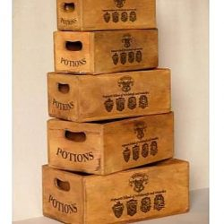 Set of 5 Nesting Boxes – Hogwarts School Potion